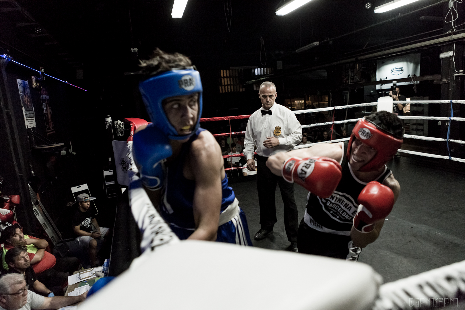 EB Boxing Fights 2017